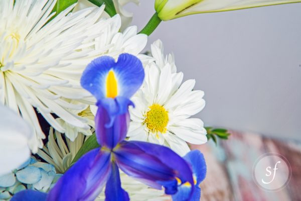 Close up of white daisy in blue, purple, and white summer bouquet in blue vase created by Steve's Floral in Manhattan, KS.