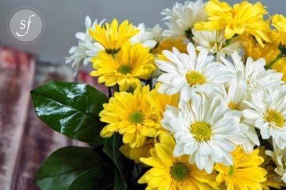 Close up of yellow, white daisies in bright, summery arrangement.