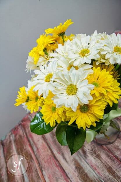 Side view of yellow, white daisies in bright, summery arrangement.