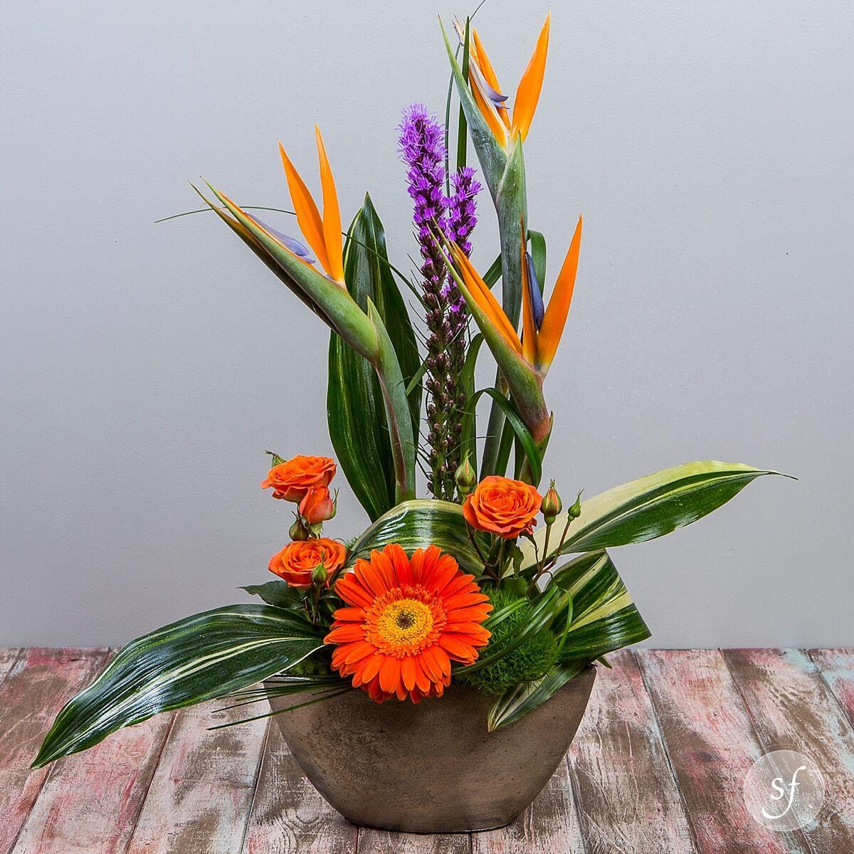 Tropical Paradise - Flower Collection, Tropical - Steve\'s Floral