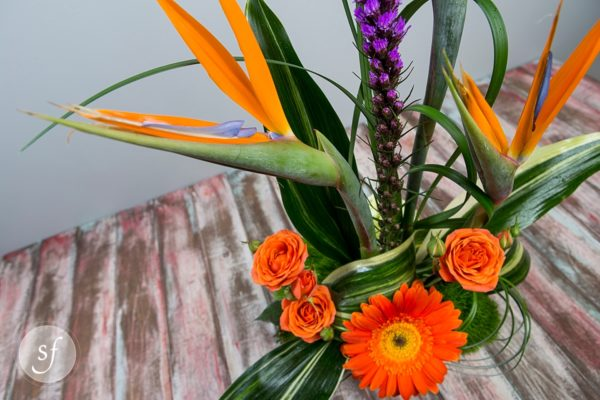 Modern tropical arrangement featuring graceful birds of paradise and colorful gerbera daisies designed by Steve's Floral in Manhattan, KS.