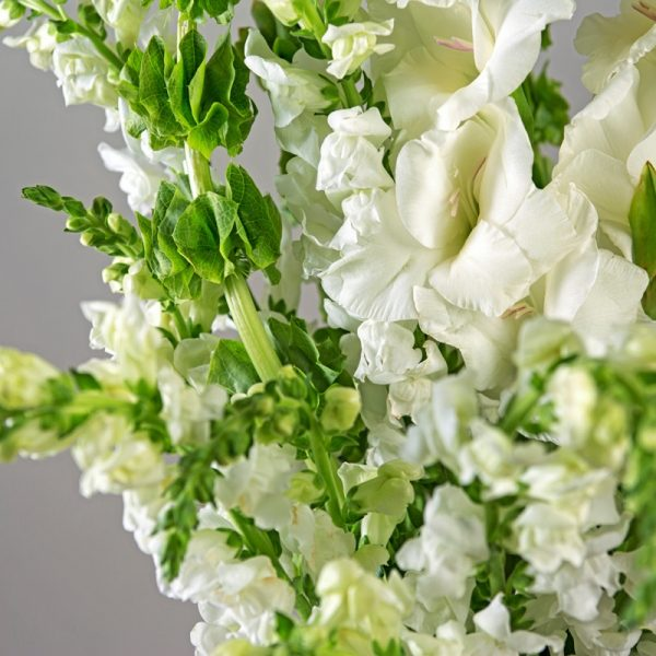 Close up of snap dragons and bells of Ireland in stunning white funeral flower bouquet.