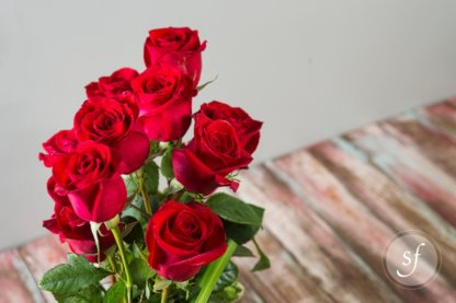 Close up of red rose blooms in modern, parallel arrangement.