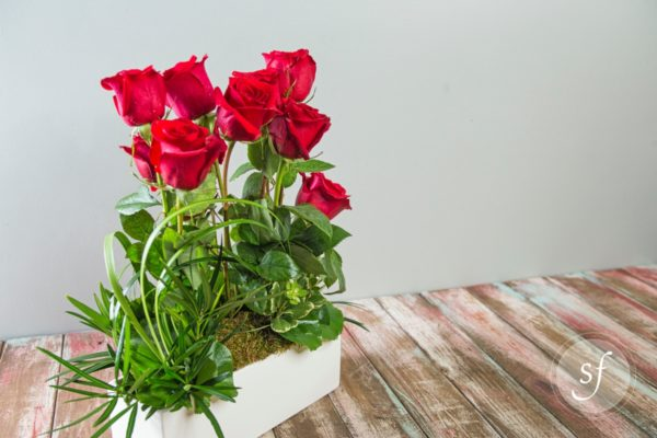 Bright red roses grace this modern and minimalistic design featuring a block of roses with greenery and a rectangular ceramic base.