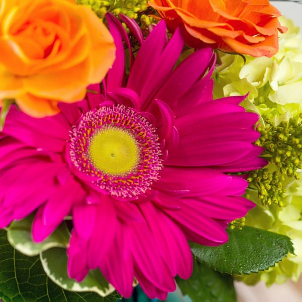 Close up of a bright pink gerbera daisy in a bright and sunny arrangement that is perfect for summertime.
