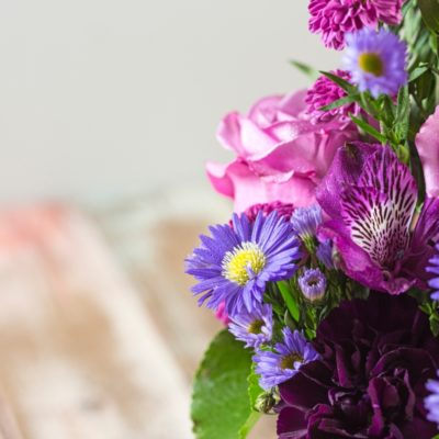 Close up of purple aster and plum alstroemeria in a K-State floral arrangement featuring lavender roses, plum carnations and alstroemeria, and purple aster in a Kansas State coffee mug.