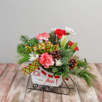 A festive medley of Christmas flowers ride merrily in a white sleigh vase adorned with a Christmas ribbon.