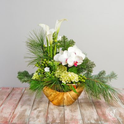 Winter season holiday arrangement featuring pine branches, calla lilies, white orchids, and hydrangea in a shiny, modern wide-bottom vase.