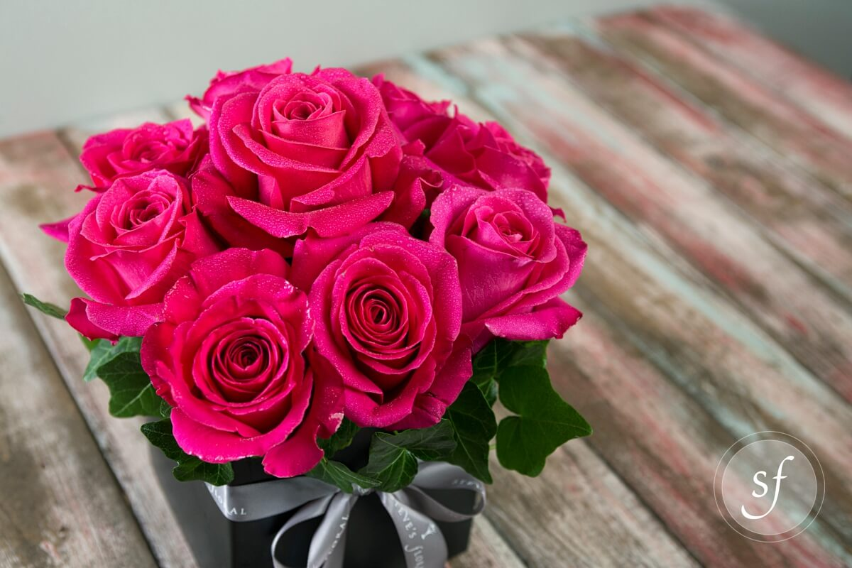 Pav roses flower collection roses steves floral 9 bright pink pave roses in modern square black vase mightylinksfo